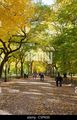 People walking in the Central Park Mall under fall colored trees - Manhattan, New York - Stock Photo