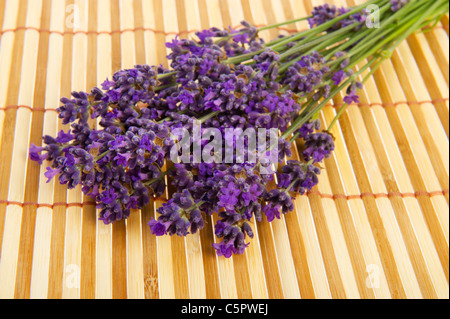 Purple bouquet Lavender flowers on bamboo background - Stock Photo