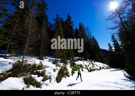 A woman jogging through a snowy mountain forest. - Stock Photo