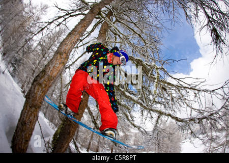A snowboarder riding through a snowy forest jumps through two trees. - Stock Photo