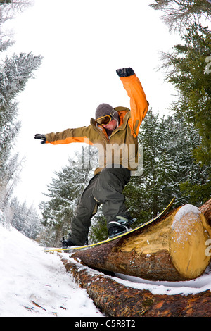 A snowboarder slides a log in a forest. - Stock Photo