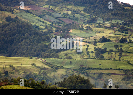 Fields and hillside, Honduras - Stock Photo