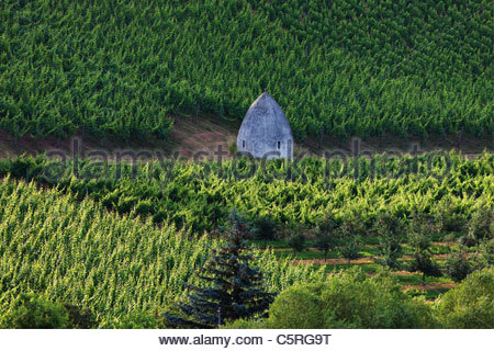Europe, Germany, Hesse, View of trullo house in vineyard - Stock Photo