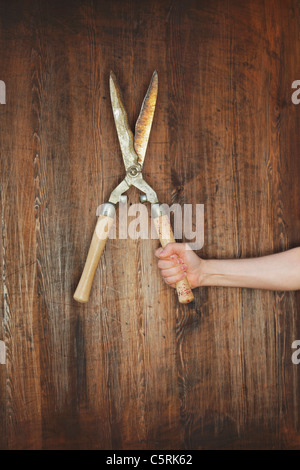 Man holding old manual hedge trimmer in front of wooden background. - Stock Photo