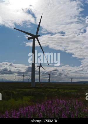 dh rwe wind farm CAUSEYMIRE CAITHNESS npower renewables national wind power group bonus wind turbine clouds uk scottish windfarm scotland