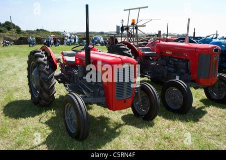Massey Ferguson 35 St Buryan vintage tractor rally - Stock Photo