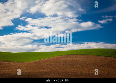 Landscape in the Palouse agricultural area of eastern Washington state, USA - Stock Photo