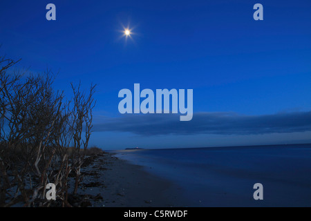 Denmark, Kattegat, Ebeltoft, Baltic Sea, View of beach near sea with moon at night - Stock Photo