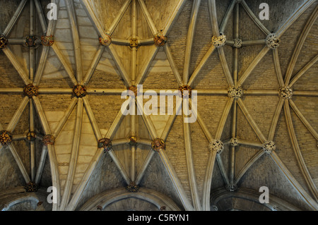 The ceiling, Malmesbury Abbey, Wiltshire, England, UK - Stock Photo