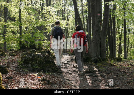 Germany, Bavaria, Franconia, Upper Franconia, Franconian Switzerland, View of man and woman hiking in beech grove - Stock Photo