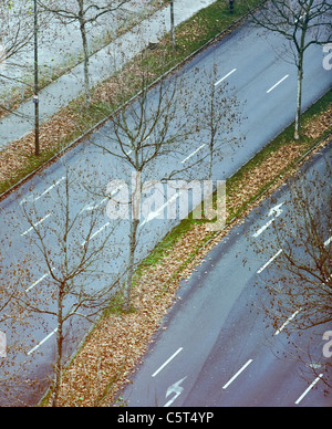 Germany, Düsseldorf, Street, grass strip with leaves, elevated view - Stock Photo