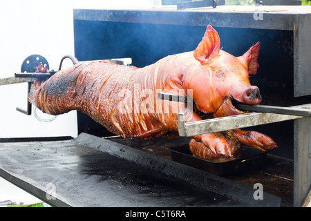 Whole pig on spit being roasted - Stock Photo