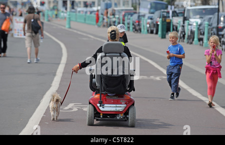 A lady on her mobility scooter takes her dog for a walk along Brighton seafront in the hot weather today - Stock Photo