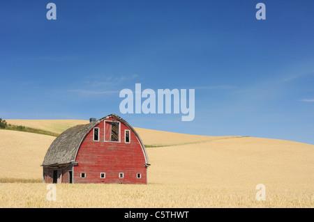 USA, Palouse, Whitman County, Washington State, Barn in field - Stock Photo