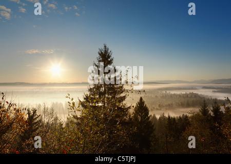 Germany, Bavaria, Upper Bavaria, View of pupplinger au near wolfratshausen - Stock Photo
