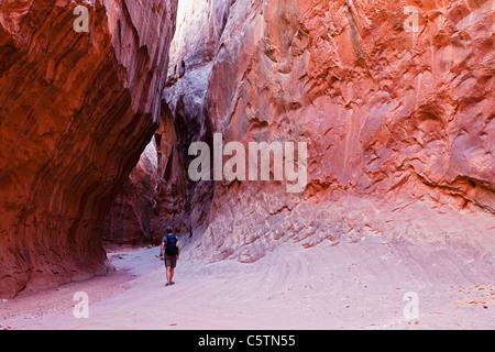 USA, Utah, Leprechaun Canyon, Hiker in a Slot Canyon, rear view - Stock Photo