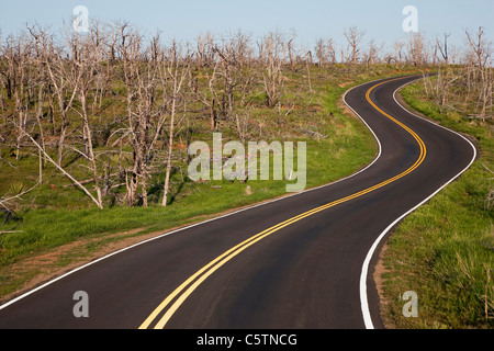 USA, Colorado, Mesa Verde Nationalpark, Empty road winding through landscape - Stock Photo