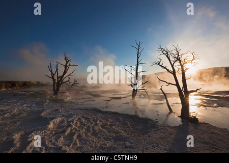 USA, Wyoming, Yellowstone National Park, Mammoth Hot Springs Terrace - Stock Photo