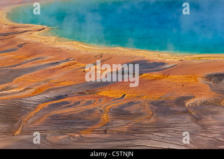 USA, Wyoming, Yellowstone National Park, Grand Prismatic Spring - Stock Photo