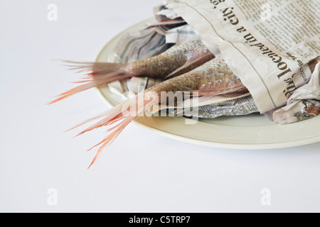 Red Snapper (Lutjanus campechanus) on plate, wrapped in paper - Stock Photo