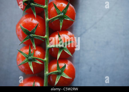 Bunch tomatoes on metal plate, elevated view, close-up - Stock Photo
