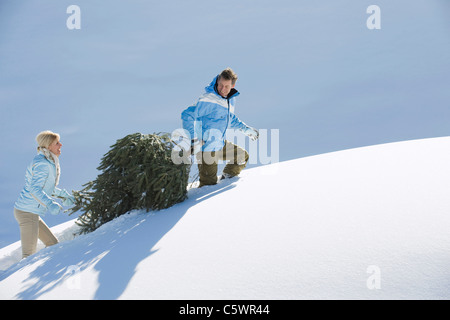 Italy, South Tyrol, Seiseralm, Couple carrying Christmas tree in snow - Stock Photo