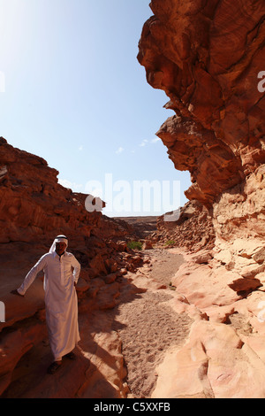 A Bedouin man standing in the Coloured Canyon, Sinai South, Egypt. - Stock Photo