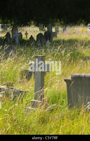 Headstones in West Brompton Cemetery in West London, England, UK. - Stock Photo