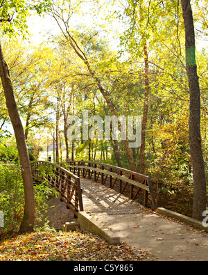 A scenic rustic foot bridge against an autumn or fall part of the year in the vertical format. - Stock Photo