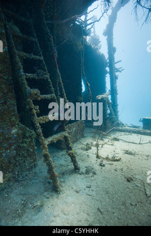 Stair on the Prince Albert wreck off the island of Roatan, Honduras. - Stock Photo