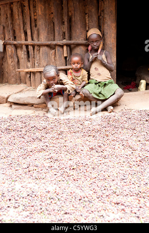 Children and coffee beans outside a hut at the village of Machekie near Konso in the Lower Omo Valley, Southern - Stock Photo