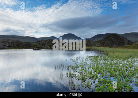 Innominate Tarn on Hay Stacks with Great Gable (centre) in the Distance. Lake District National Park. Cumbria. England. UK.