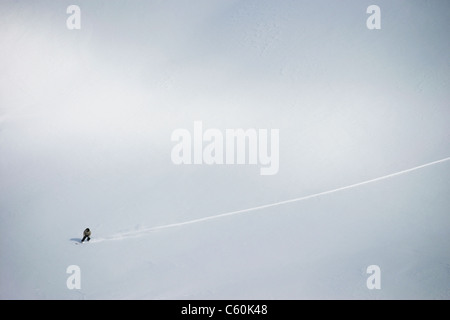 Aerial view of cross country skier - Stock Photo