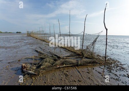 view of estuary in krabi river at low tide, krabi, thailand - Stock Photo