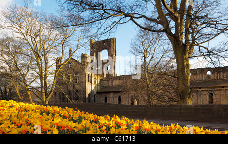 kirkstall abbey leeds in spring - Stock Photo
