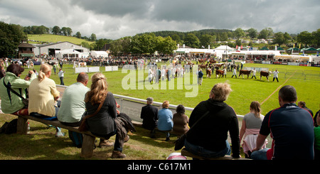 General view of people attending the Royal Welsh Agricultural Show, Builth Wells, Wales, 2011 - Stock Photo