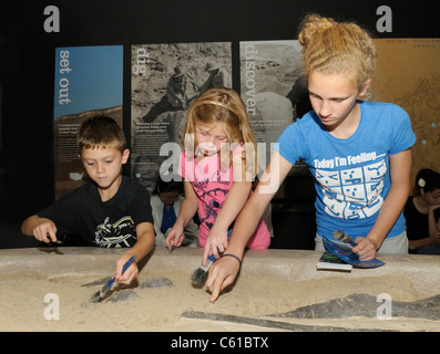 Kids digging for fossils at a natural history museum - Stock Photo