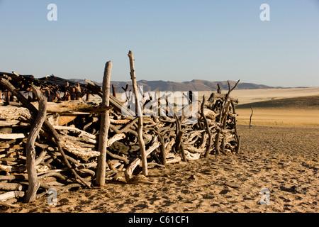The wooden fence to the Himba village. Purros, Northern Kaokoland, Kaokoveld, Namibia. - Stock Photo