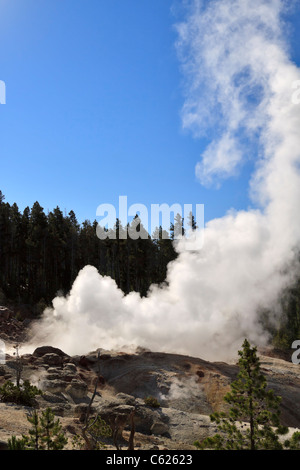 Steamboat Geyser, Norris Geyser Basin, Yellowstone National Park, Wyoming. Steam vents from the irregular Steamboat - Stock Photo