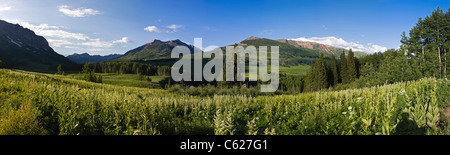 Panorama view of the Elk Mountains near Crested Butte, Colorado, USA - Stock Photo