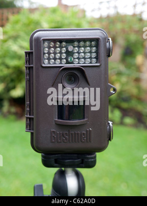 Bushnell Trophy Cam automatic day and night still and video camera for recording wildlife on a tripod in an urban - Stock Photo