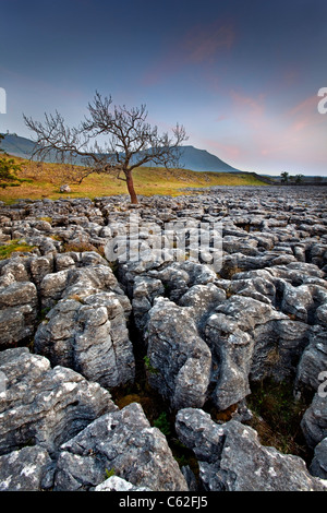 The Yorkshire Dales National Park at Dusk. - Stock Photo