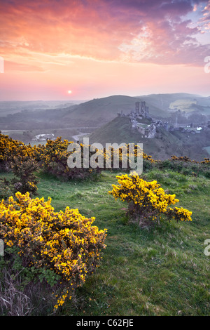 Sunrise at Corfe Castle in Dorset, England. - Stock Photo