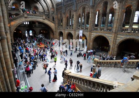 Natural History Museum, London, Britain, UK - Stock Photo