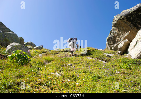 Male hiker walking up steep path against blue sky in the French Alps. - Stock Photo