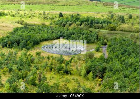 New plantation, near Walltown Crags, Hadrian's Wall, Greenhead, Northumberland, England, UK - Stock Photo