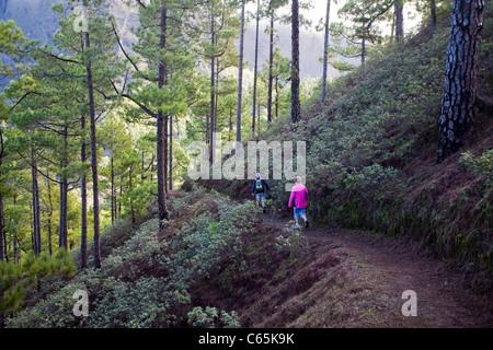 Hiker at National park Caldera de Taburiente, La Palma island, Canary islands, Spain, Europe - Stock Photo