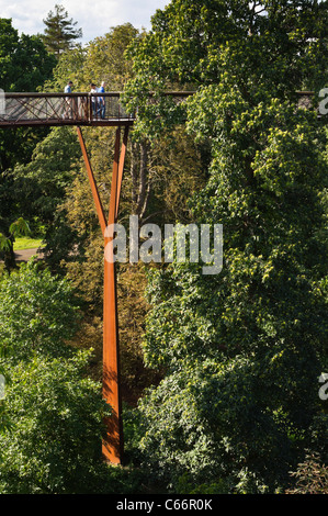 London, Kew Gardens, Royal Horticultural Society - the Treetop Walkway, 18m high structure with circular walk through - Stock Photo