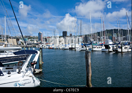 Ocean Going Yachts Boats Motor and Crusiers Moored in Chaffers Marina by Oriental Bay Wellington North Island New - Stock Photo
