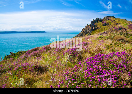Morte Point near Morthoe, Woolacombe with a view over the Bristol Channel and Baggy Point, North Devon, England, - Stock Photo